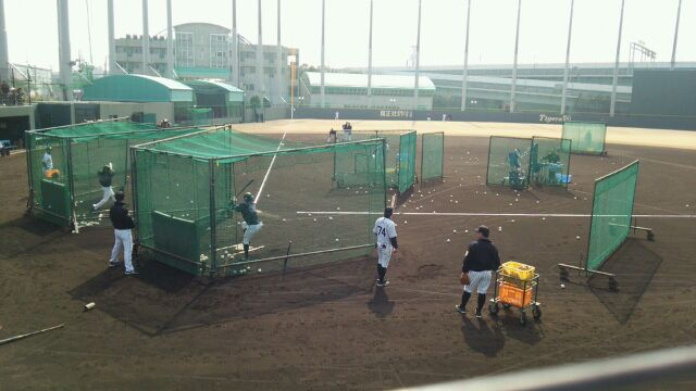 打ってるのは柴田外野手 74番は優勝メンバー藤本コーチ