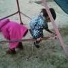 子どもたちが遊んでるのを見てたらおもしろい件