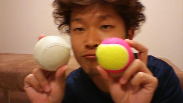野球のボールとかテニスボールがいいっすよ♪